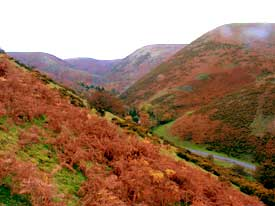Autumn in Cardingmill Valley, Church Stretton, Shropshire